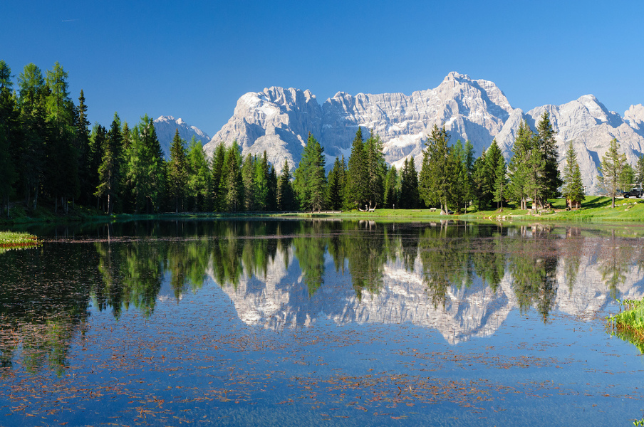 A2A-Alps Spring