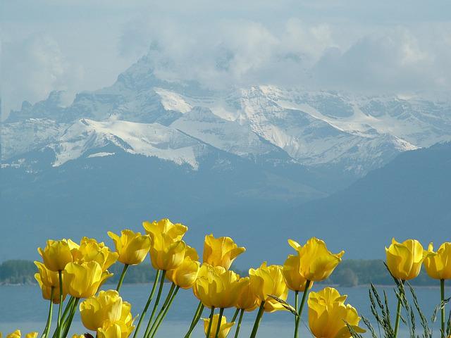Montblanc Lake Geneva-Montreux