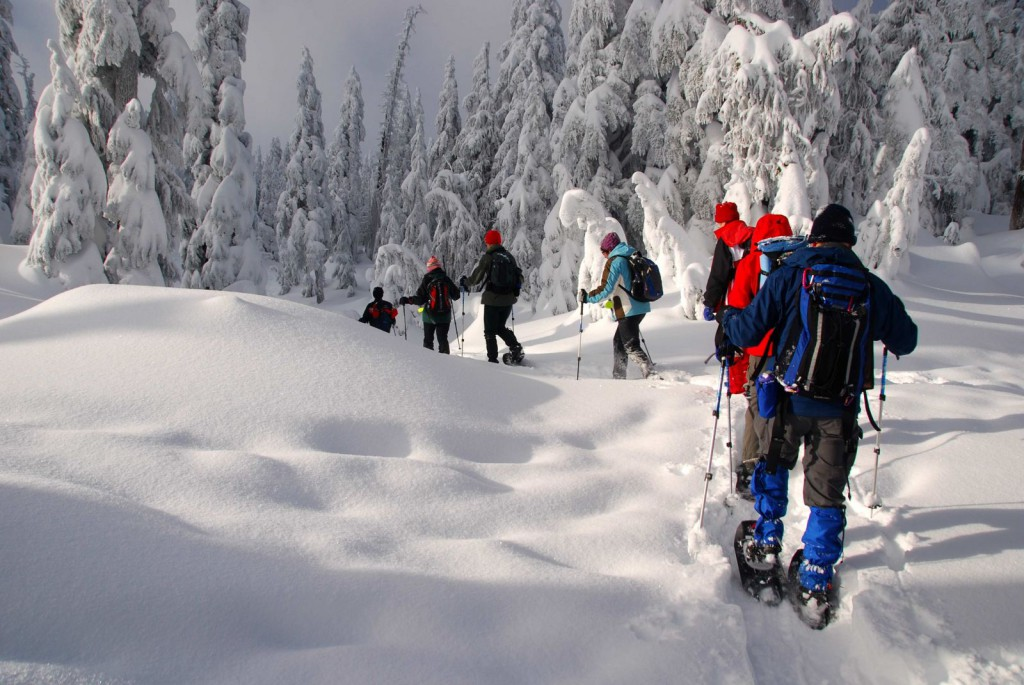 People walking in snowshoes