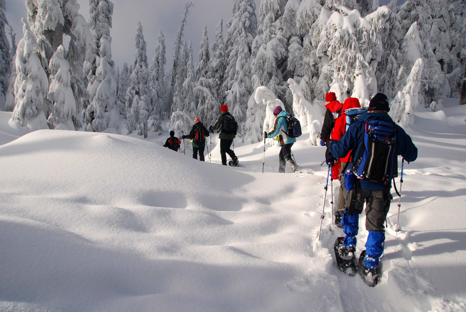 5 Good Reasons You Should Try Snowshoeing