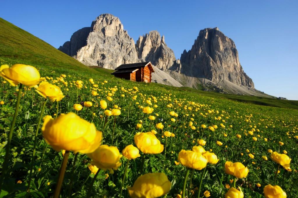 Canazei chalet mountains