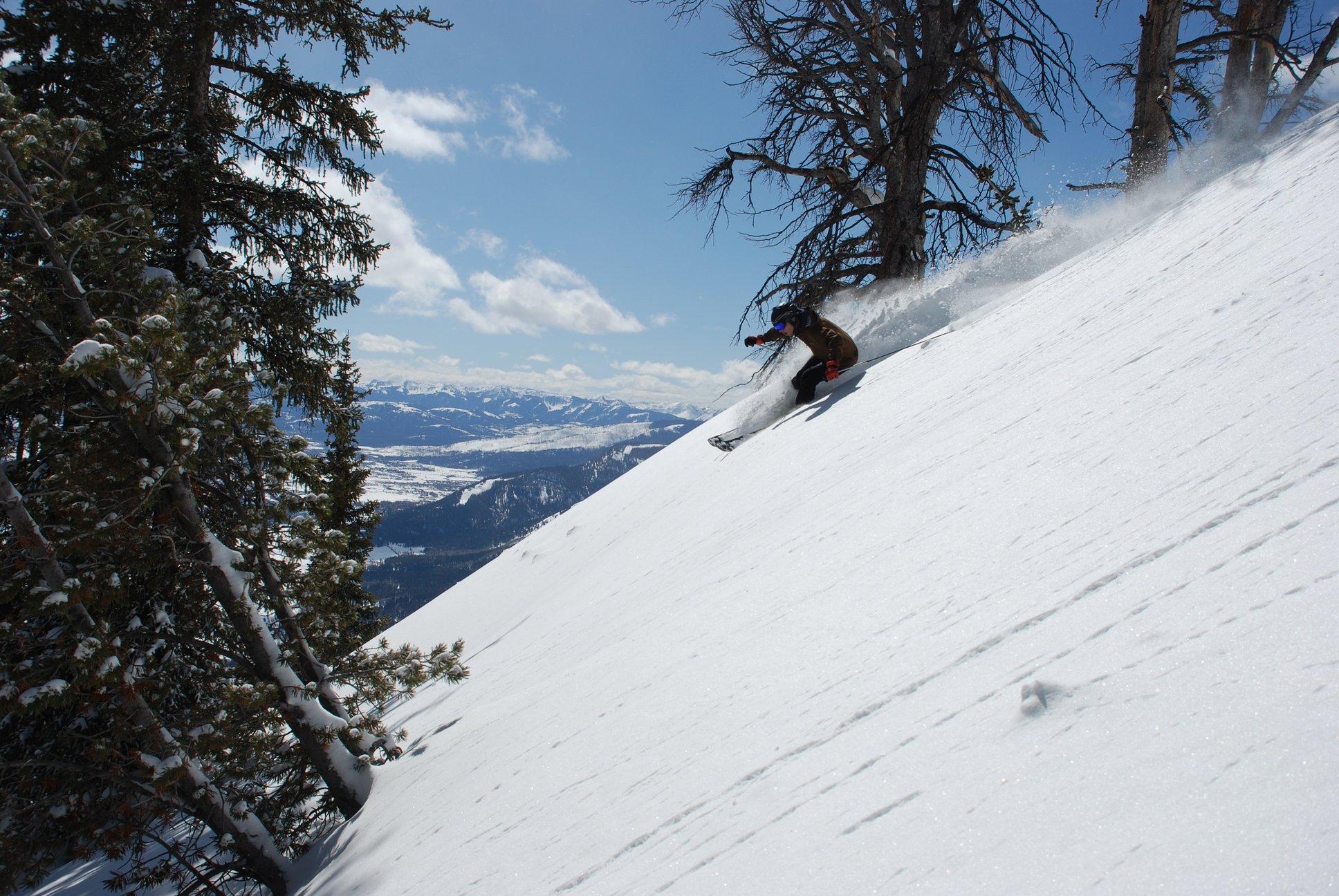 Skier on a black run