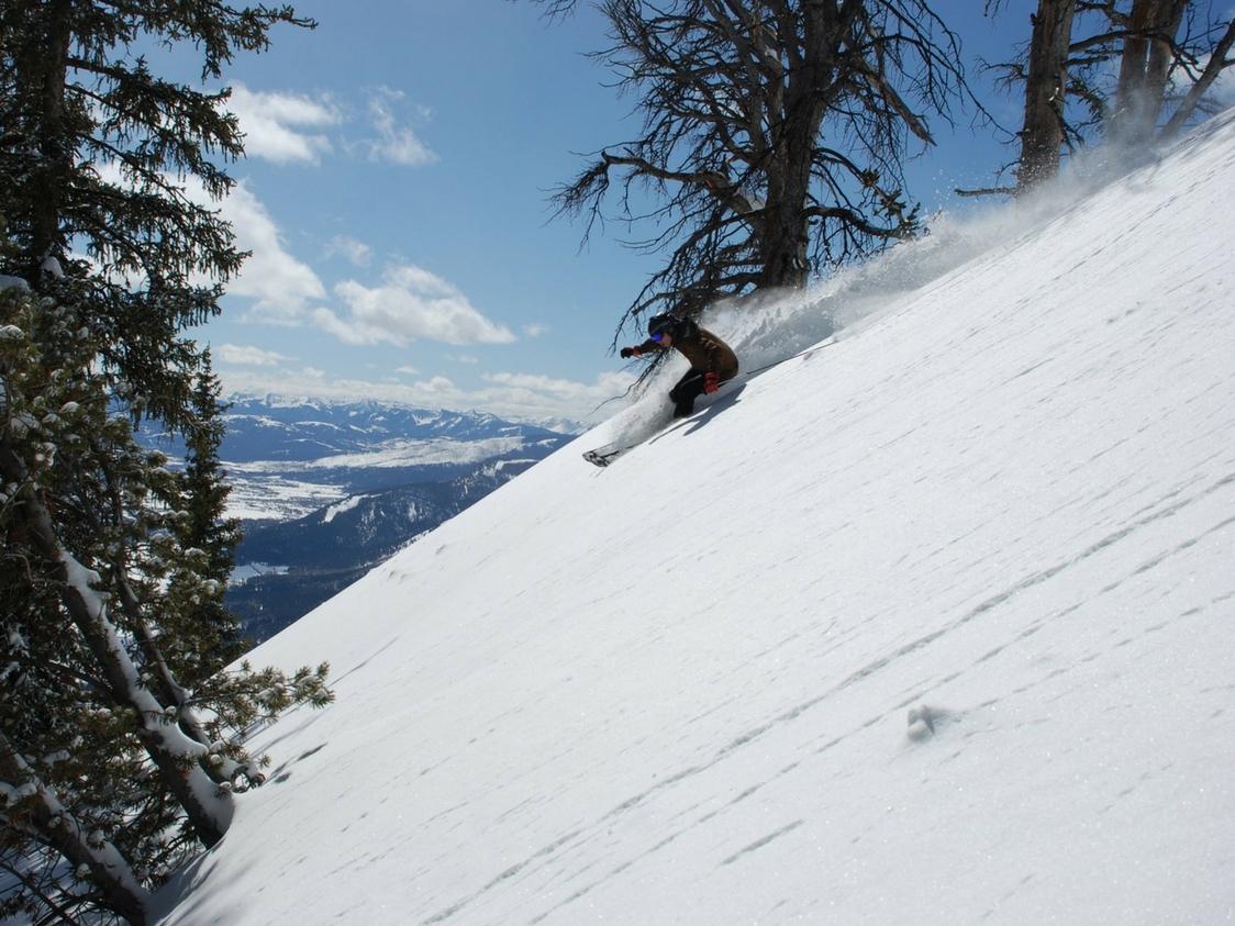 skier skiing down a mountain