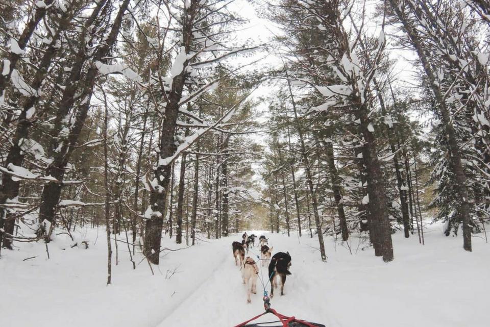 Skiing Experiences You Shouldn't Miss Next Season