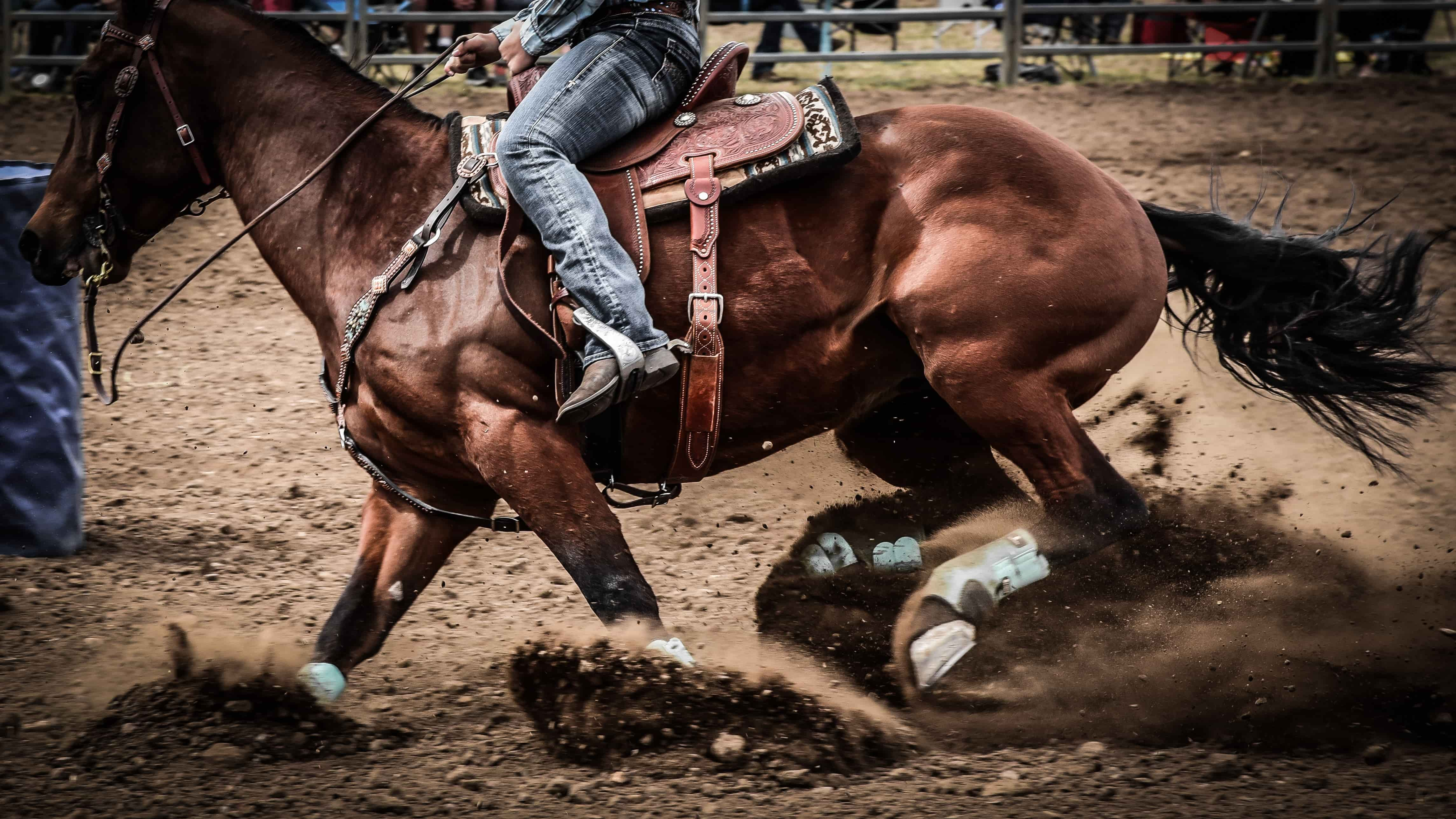 Horse turning quickly through dirt with rider on top.