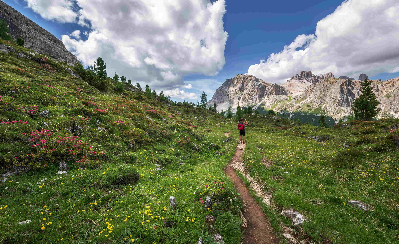 Hiking in alpine meadows